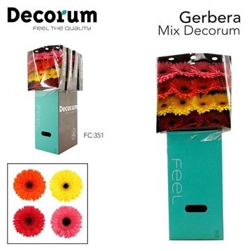 GE GR Mix dia 60 stuks FC351 Decorum