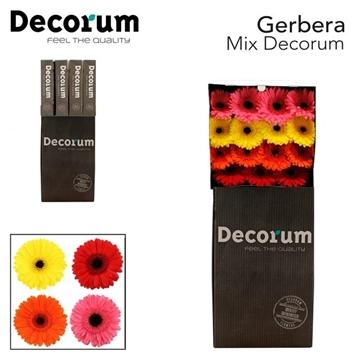 GE GR Mix Decorum45stuks fc 351