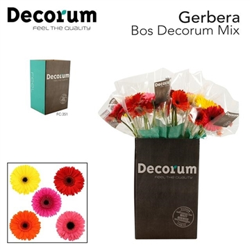 GE GR Mix Bos4x10 stuks Fc351 Decorum