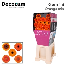 Ge Mi diamond mix Orange