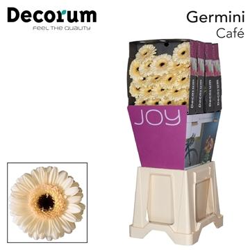 Ge Mi diamond Café