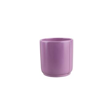 Lazio lilac 9cm