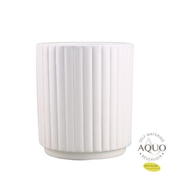 Molise aquo white