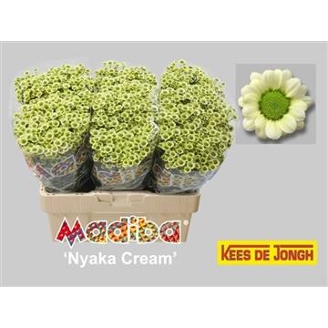 Madiba Nyaka Cream
