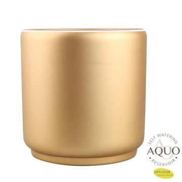 Veneto Gold Aquo 15cm