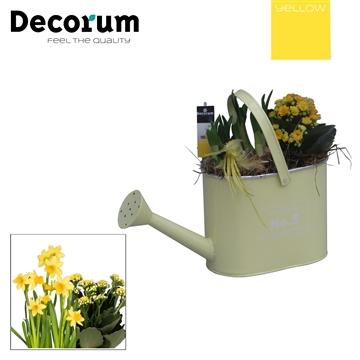 Calandiva & Narcis Colourful Bucket Gieter HL28630 [YELLOW]