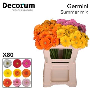Ge Mi Mix Summer
