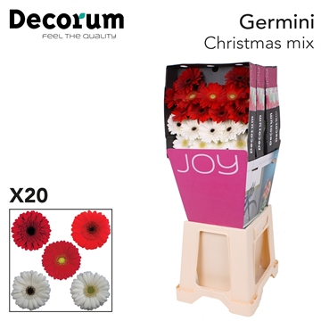 Ge Mi diamond Mix Christmas X20