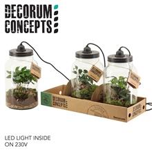 Terrarium Weckpot met lamp Botanische mix (Decorum Concepts)