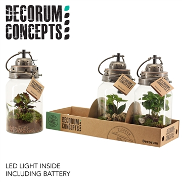 Terrarium Stormlamp (Decorum Concepts)
