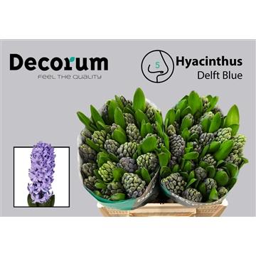 HYAC Delft Blue (Auction Decorum)