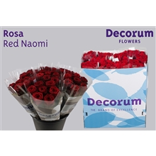 Rosa Red Naomi a 7 flowers (price per bunch)
