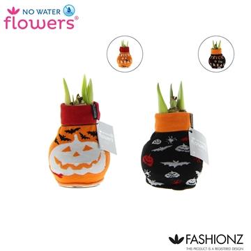 No Water Flowers® Fashionz Halloween