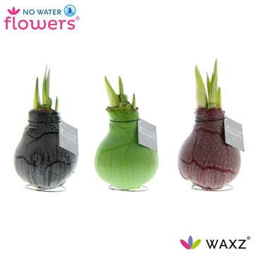 No Water Flowers Waxz® Marble