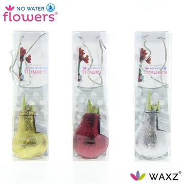 No Water Flowers Glitterz® Goud / Rood / Zilver in tasje