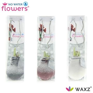No Water Flowers Waxz® Snow in tasje