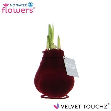 No Water Flowers Velvet Touchz® Bordeaux
