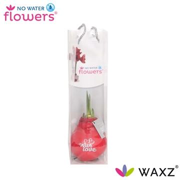 No Water Flowers Waxz® Message Printz With Love in tasje