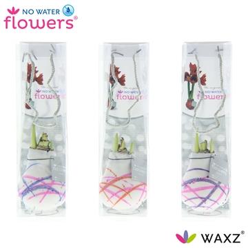 No Water Flowers Waxz® Art Karel Appel in tasje