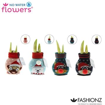 No Water Flowers® Fashionz Silly mix