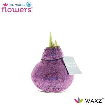 No Water Flowers Glitterz® Showbizz