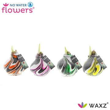 No Water Flowers Waxz®Artooz Fantasy mix (Decorum)