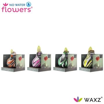 No Water Flowers Waxz®Artooz Fantasy mix Boxz (Decorum)