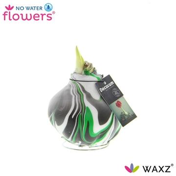 No Water Flowers Waxz®Artooz Fantasy Green (Decorum)