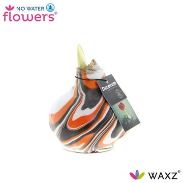 No Water Flowers Waxz®Artooz Fantasy Orange (Decorum)