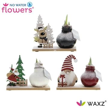 No Water Flowers ® Winter Wonderland Mix