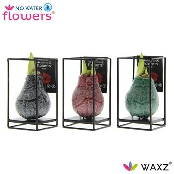 No Water Flowers Waxz® Formz Industrial mix