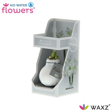 No Water Flowers Waxz® White in Gift Box