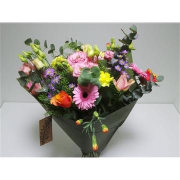 Bouquet Field Leslie