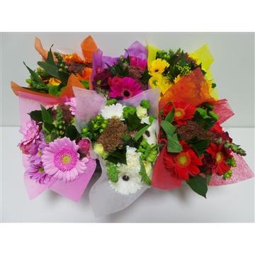 Bouquet SHORTIES