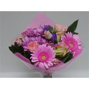 Bouquet Shorties Pink