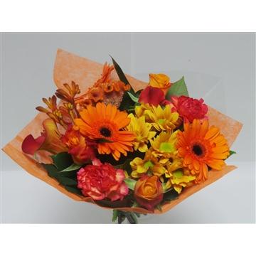 Bouquet Shorties Orange