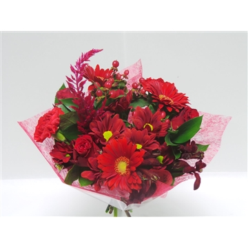 Bouquet Shorties Red