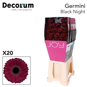 Ge Mi diamond Black  Night x20