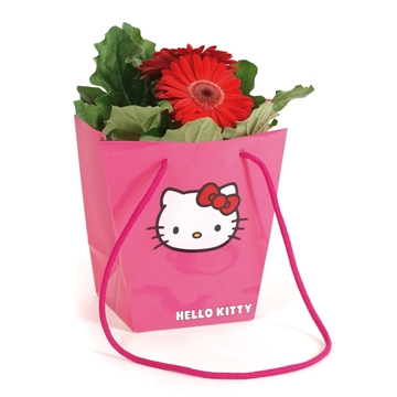 Gerbera Belicht  2+Bl.12cm in Hello Kitty Hawaiitas