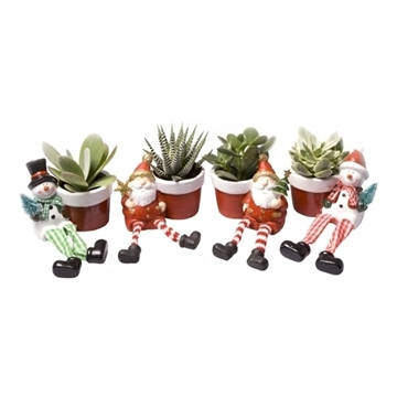 Succulent MIX in pot with Christmas Figure