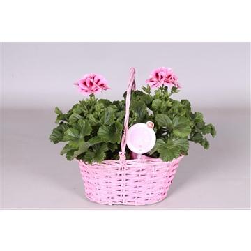 MoreLIPS® Pel. Grand. in roze duo hengselmand
