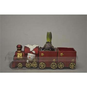 Hyacint in kerst trein