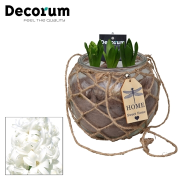 Hyacint Hangbol maxi HL16178WP [COFFEE & CHAMPAGNE]