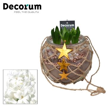 Hyacint Hangbol maxi HL16179WP [COFFEE & CHAMPAGNE]