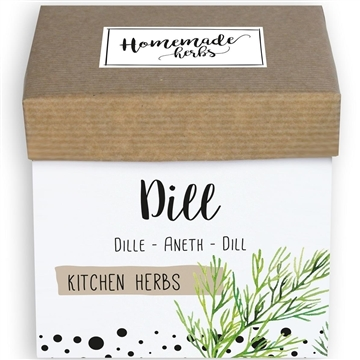 Homemade Herbs Kitchen Dill
