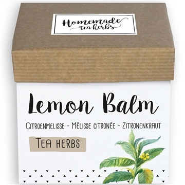 Homemade Herbs Tea Lemon Balm