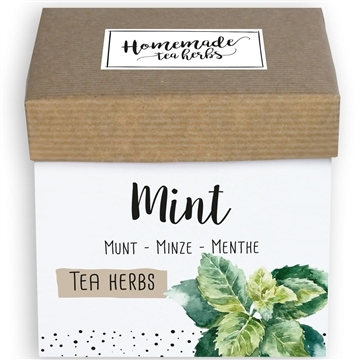 Homemade Herbs Tea Mint