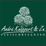 Andre Knoppert
