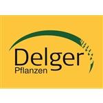 Delger