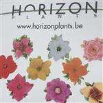 Horizon Kwekerij Bvba